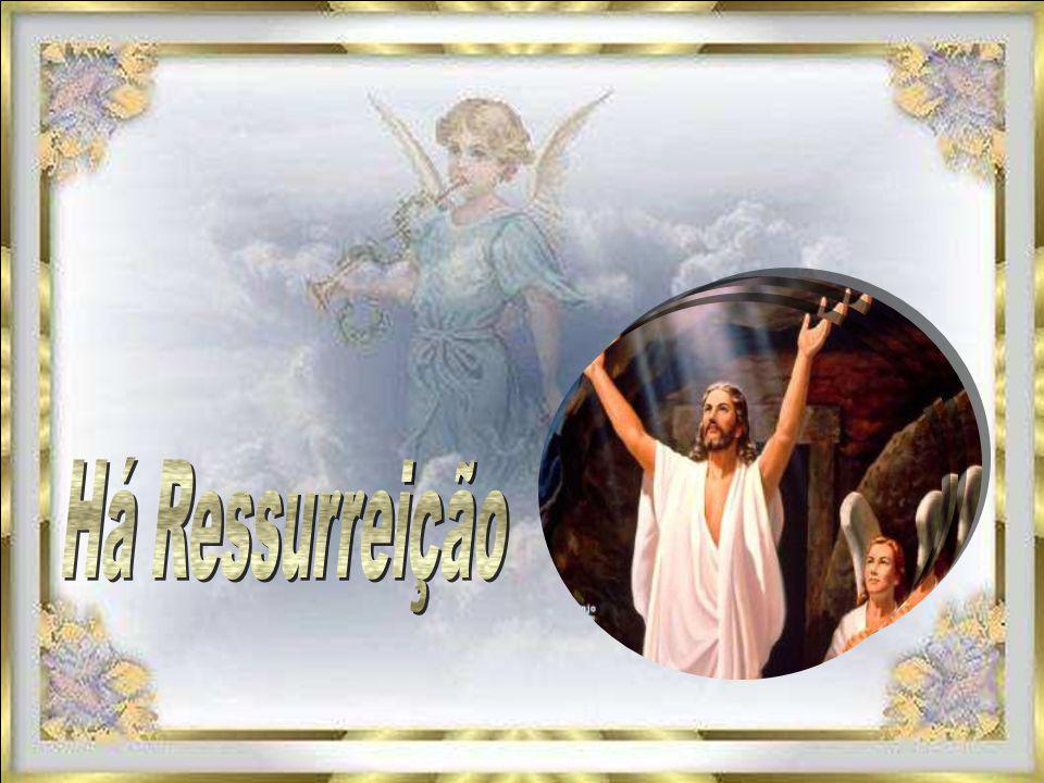 Desejo-lhe prolongado tempo de silêncio, Em espaço orante de harmonia e luz E uma gloriosa ressurreição No abraço cheio de paz Do Mestre JESUS Desejo-lhe prolongado tempo de silêncio, Em espaço orante de harmonia e luz E uma gloriosa ressurreição No abraço cheio de paz Do Mestre JESUS