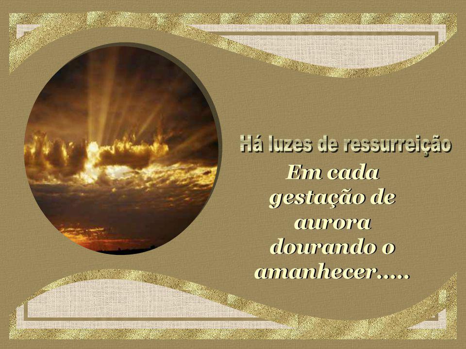 Em cada gestação de aurora dourando o amanhecer.....
