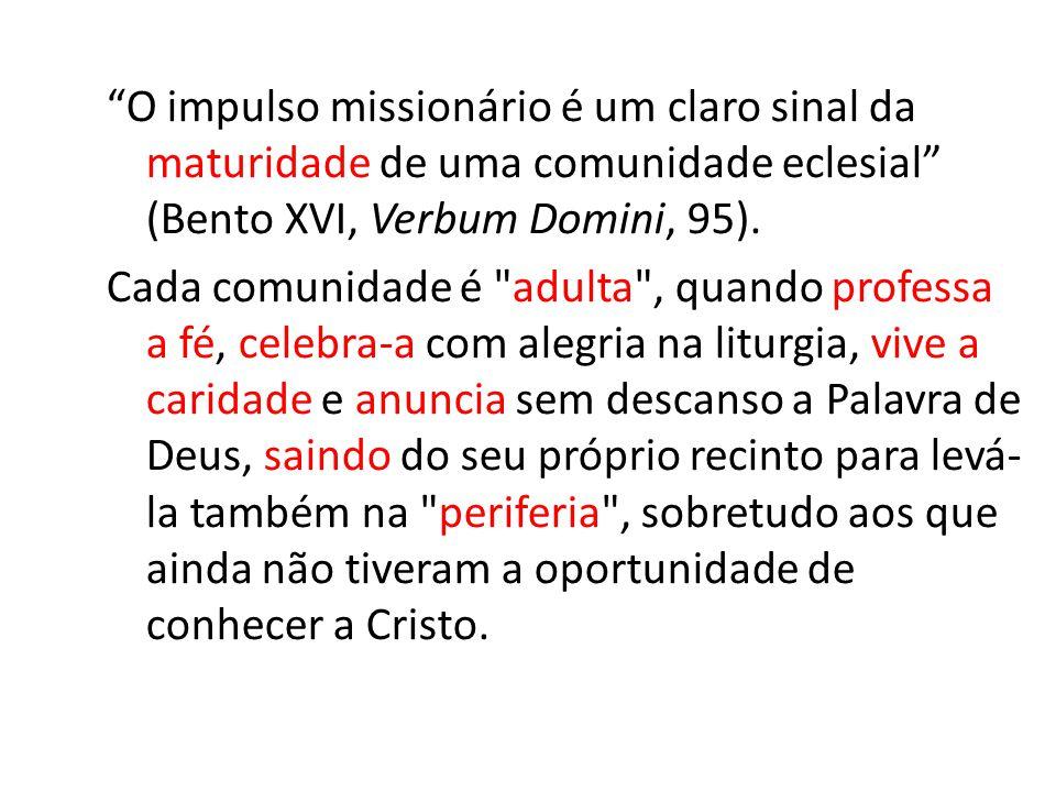 O impulso missionário é um claro sinal da maturidade de uma comunidade eclesial (Bento XVI, Verbum Domini, 95). Cada comunidade é