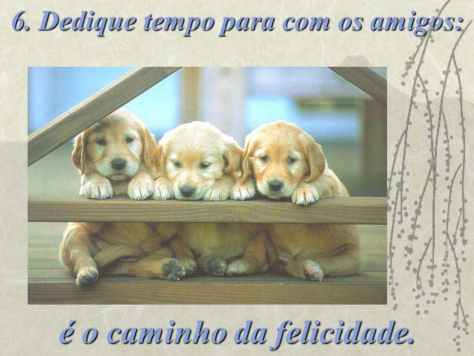 6. Dedique tempo para com os amigos: é o caminho da felicidade.