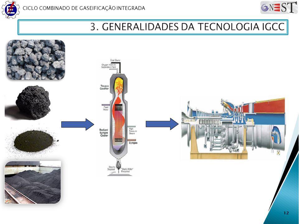 CICLO COMBINADO DE GASEIFICAÇÃO INTEGRADA 12