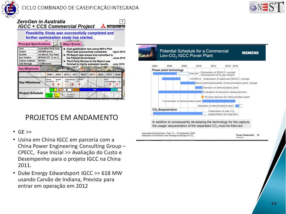 CICLO COMBINADO DE GASEIFICAÇÃO INTEGRADA 33