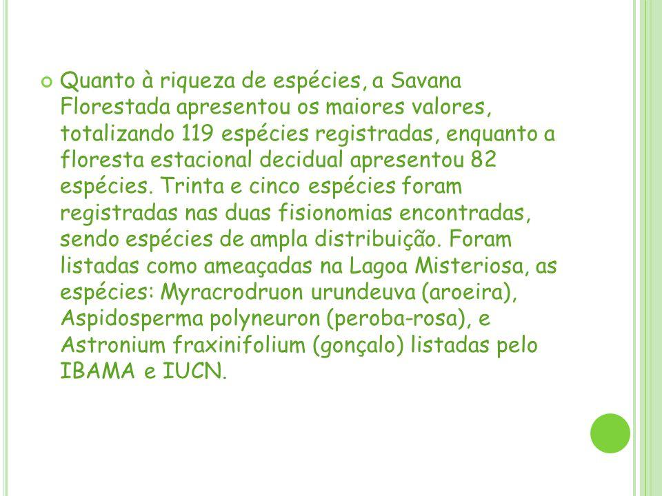 Quanto à riqueza de espécies, a Savana Florestada apresentou os maiores valores, totalizando 119 espécies registradas, enquanto a floresta estacional