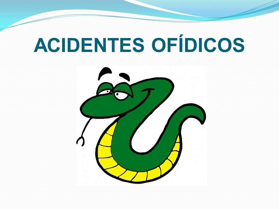 ACIDENTES OFÍDICOS