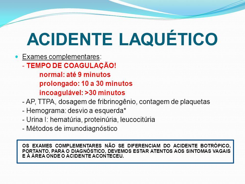 ACIDENTE LAQUÉTICO Exames complementares: - TEMPO DE COAGULAÇÃO! normal: até 9 minutos prolongado: 10 a 30 minutos incoagulável: >30 minutos - AP, TTP