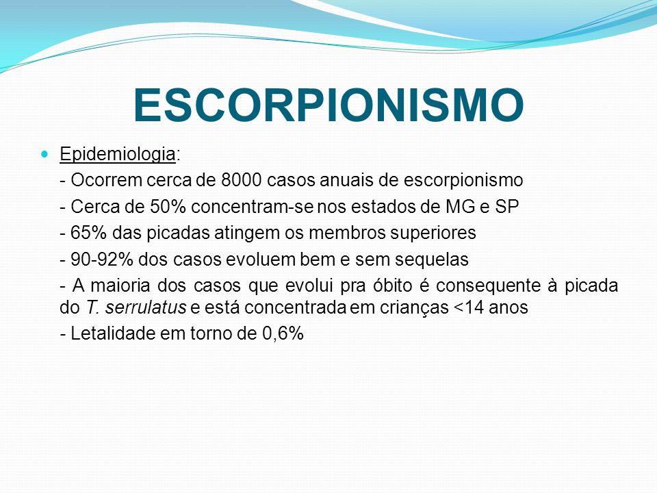 ESCORPIONISMO Epidemiologia: - Ocorrem cerca de 8000 casos anuais de escorpionismo - Cerca de 50% concentram-se nos estados de MG e SP - 65% das picadas atingem os membros superiores - 90-92% dos casos evoluem bem e sem sequelas - A maioria dos casos que evolui pra óbito é consequente à picada do T.