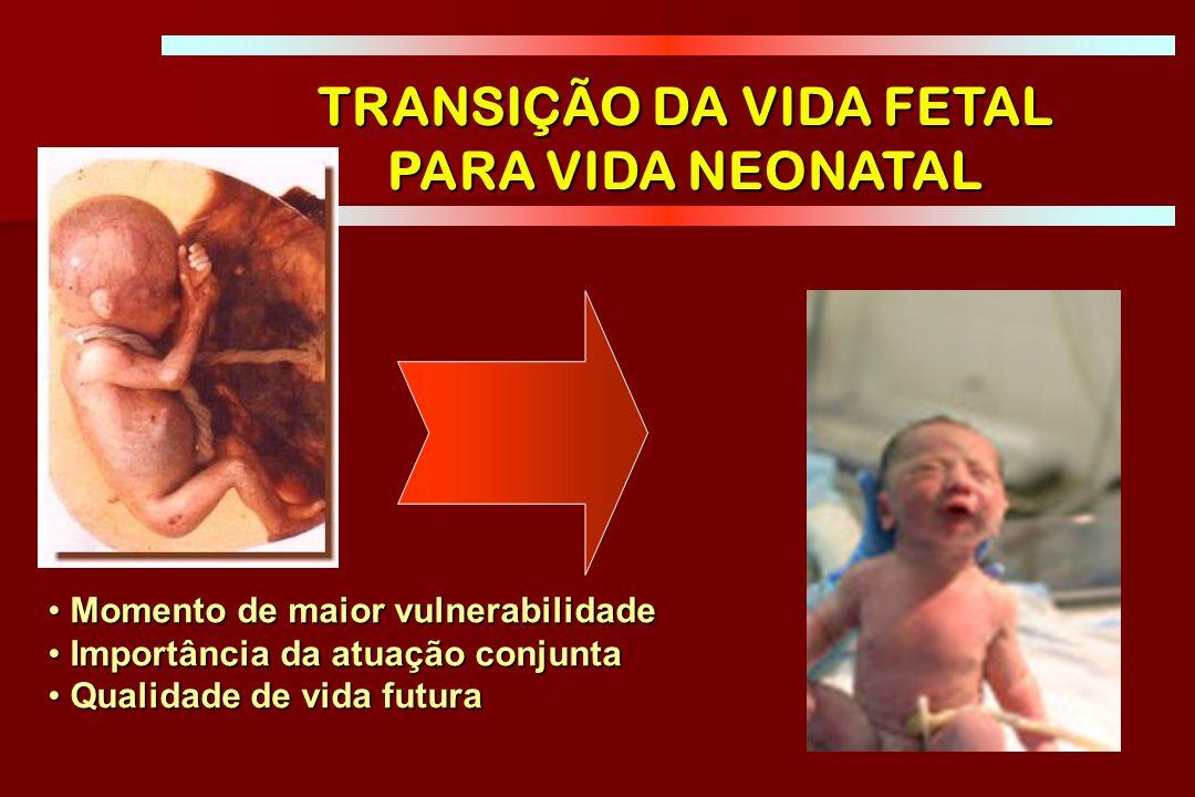 BRASIL DATASUS: www.datasus.gov.br PRN - Mortalidade neonatal precoce associada à asfixia ao nascer 2010 2.861.868 NV 39.870 óbitos < 1 ano 21.315 (53%) óbitos de 0-6 dias 4500 óbitos ASFIXIA PERINATAL 21% dos óbitos neonatais ~13 RN/dia – 1 a cada 2h
