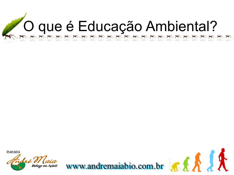 www.andremaiabio.com.brwww.andremaiabio.com.br O que é Educação Ambiental?