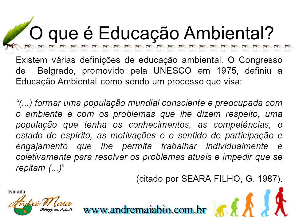 www.andremaiabio.com.brwww.andremaiabio.com.br O que é Educação Ambiental.