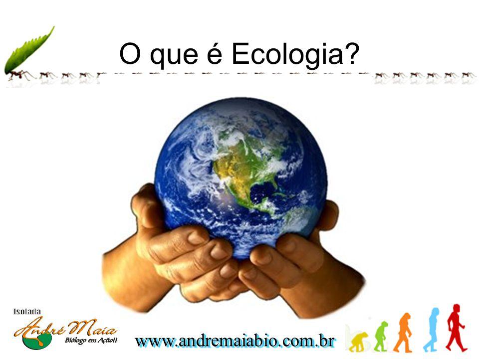 www.andremaiabio.com.brwww.andremaiabio.com.br O que é Ecologia?
