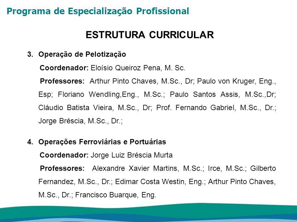 Programa de Especialização Profissional ESTRUTURA CURRICULAR 3.Operação de Pelotização Coordenador: Eloísio Queiroz Pena, M. Sc. Professores: Arthur P