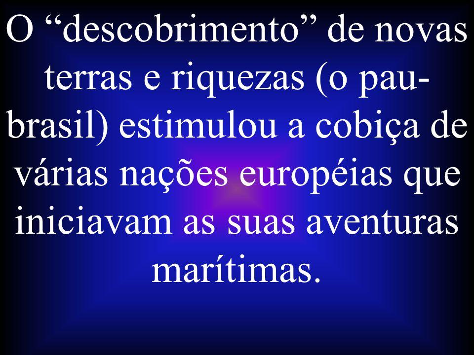O descobrimento de novas terras e riquezas (o pau- brasil) estimulou a cobiça de várias nações européias que iniciavam as suas aventuras marítimas.