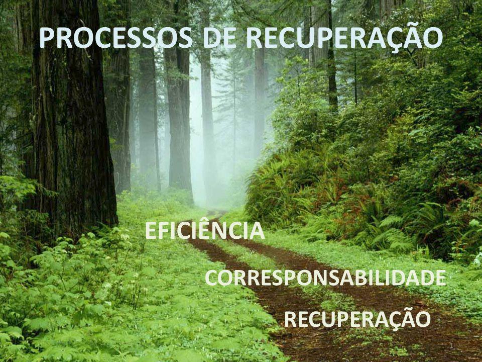 PROCESSOS DE RECUPERAÇÃO CORRESPONSABILIDADE EFICIÊNCIA RECUPERAÇÃO 1