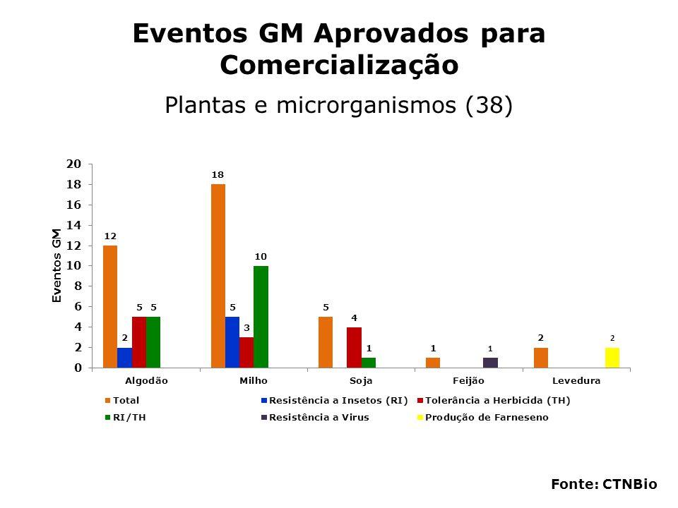 Eventos GM Aprovados para Comercialização Plantas e microrganismos (38) Fonte: CTNBio