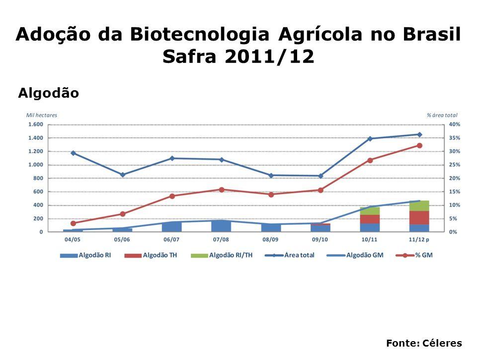 Adoção da Biotecnologia Agrícola no Brasil Safra 2011/12 Fonte: Céleres Algodão