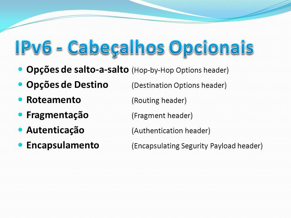 Opções de salto-a-salto (Hop-by-Hop Options header) Opções de Destino (Destination Options header) Roteamento (Routing header) Fragmentação (Fragment