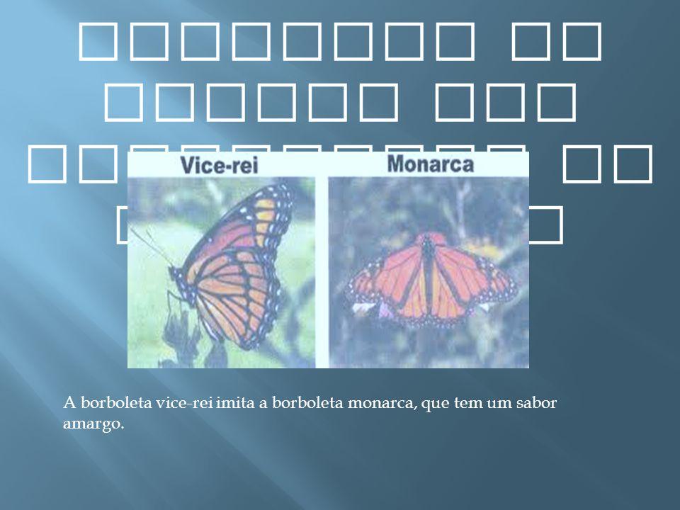 Exemplos de presas com capacidade de mimetismo A borboleta vice-rei imita a borboleta monarca, que tem um sabor amargo.
