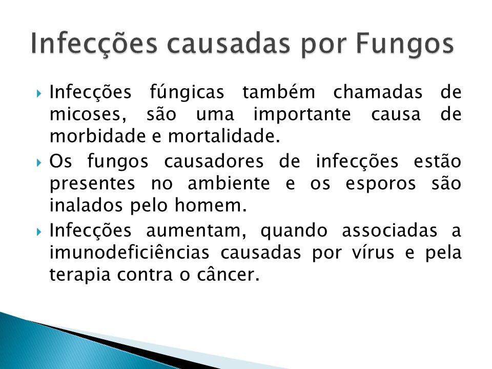 Infecções fúngicas também chamadas de micoses, são uma importante causa de morbidade e mortalidade. Os fungos causadores de infecções estão presentes