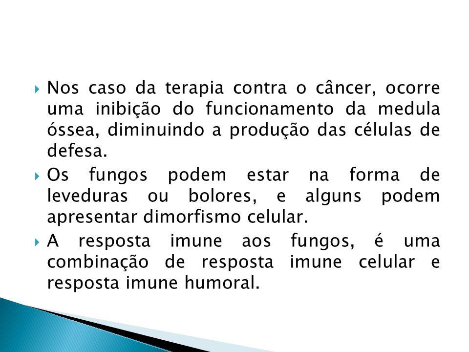 Nos caso da terapia contra o câncer, ocorre uma inibição do funcionamento da medula óssea, diminuindo a produção das células de defesa. Os fungos pode