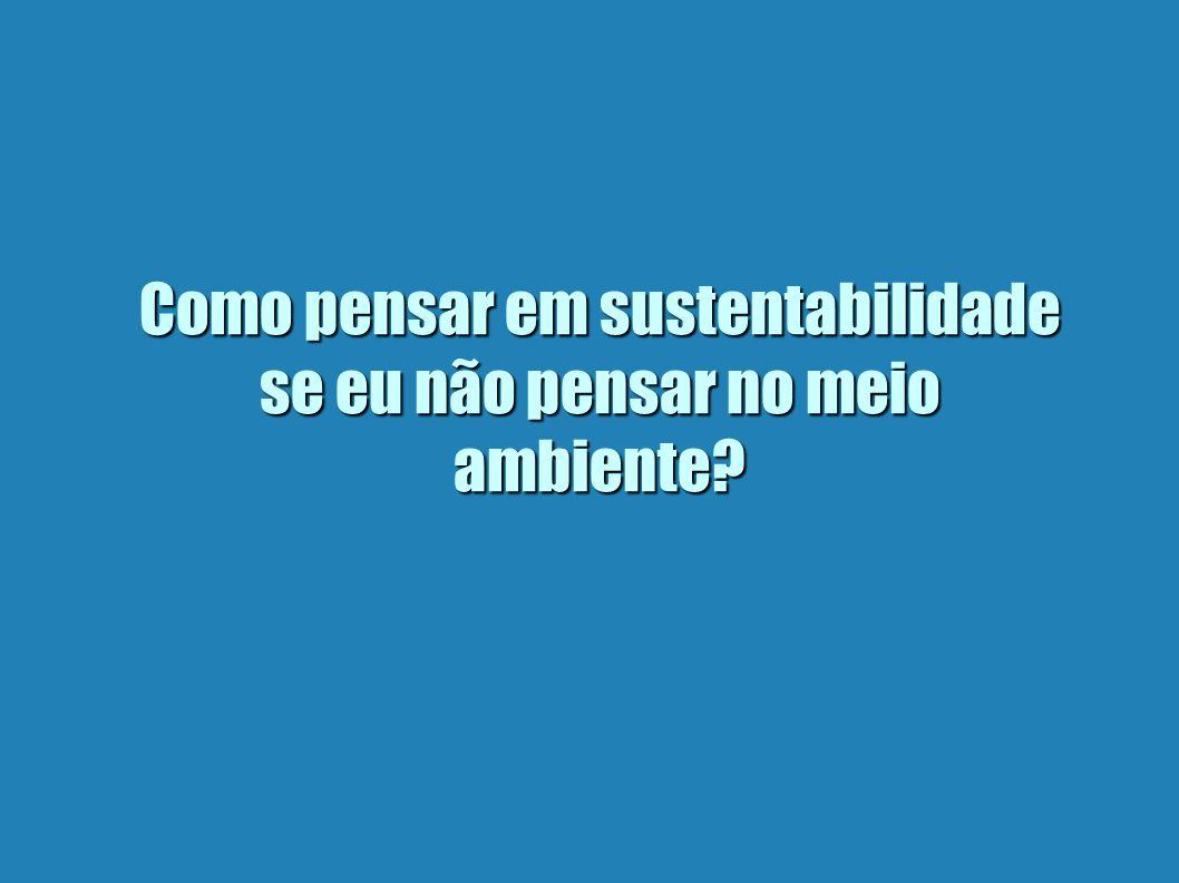 Como pensar em sustentabilidade se eu não pensar no meio ambiente?
