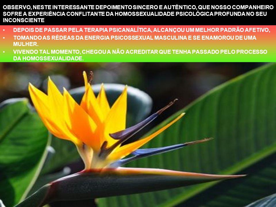 A INSEGURANÇA, MEDO E FRUSTRAÇÃO NOS IMPULSOS AFETIVO-SEXUAIS O ESPÍRITO QUE, AO REENCARNAR, TRAZ, DESDE TENRA IDADE, UM DIRECIONAMENTO HOMOSSEXSUAL,