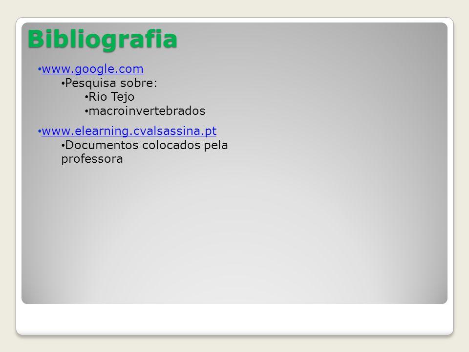 Bibliografia www.google.com Pesquisa sobre: Rio Tejo macroinvertebrados www.elearning.cvalsassina.pt Documentos colocados pela professora