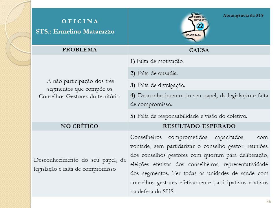 O F I C I N A STS.: Ermelino Matarazzo PROBLEMA CAUSA A não participação dos três segmentos que compõe os Conselhos Gestores do território.