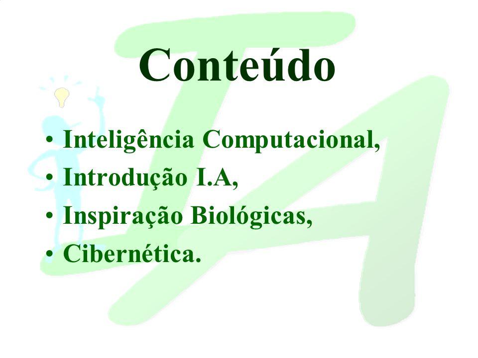 Inteligência Computacional Técnicas e sistemas computacionais que imitam aspectos humanos, tais como: percepção, raciocínio, aprendizado, evolução e adaptação.