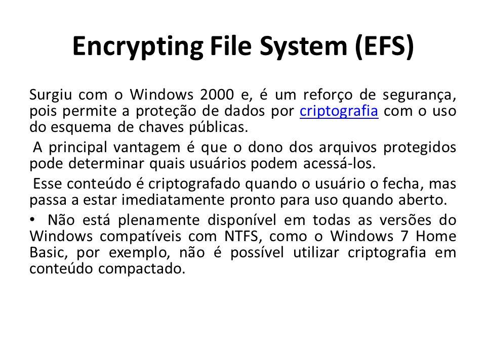 Encrypting File System (EFS) Surgiu com o Windows 2000 e, é um reforço de segurança, pois permite a proteção de dados por criptografia com o uso do es