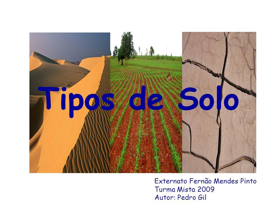 Tipos de Solo O QUE É O SOLO.O solo é a parte mais superficial da Terra.