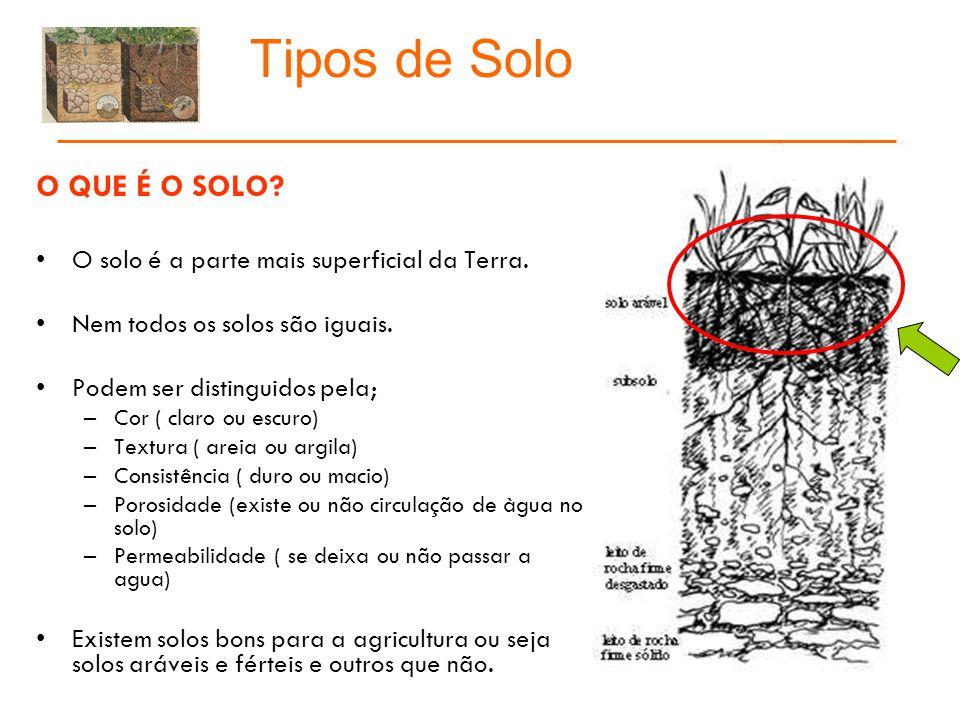 Tipos de Solo COMO SE FORMA O SOLO.