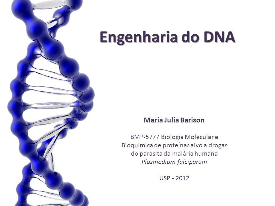 Engenharia do DNA María Julia Barison BMP-5777 Biologia Molecular e Bioquimica de proteínas alvo a drogas do parasita da malária humana Plasmodium fal