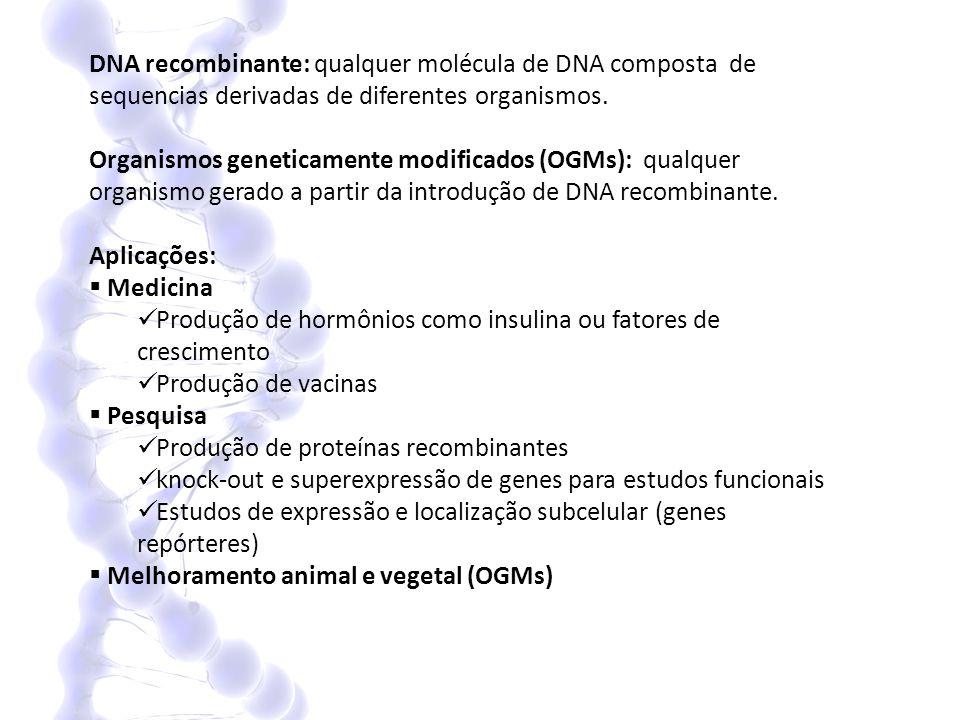 DNA recombinante: qualquer molécula de DNA composta de sequencias derivadas de diferentes organismos. Organismos geneticamente modificados (OGMs): qua