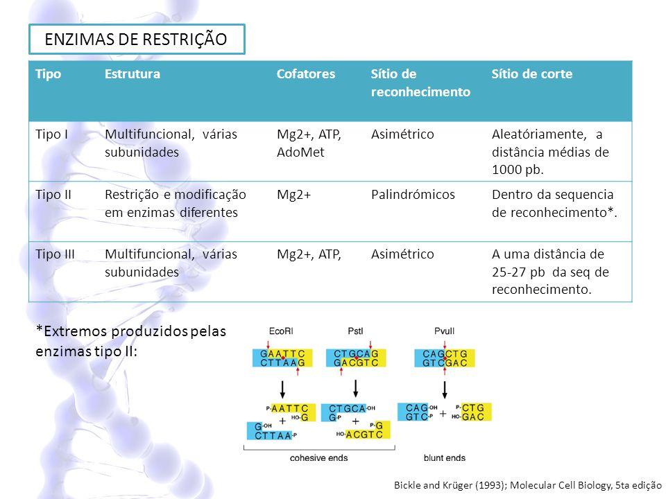 ENZIMAS DE RESTRIÇÃO TipoEstruturaCofatoresSítio de reconhecimento Sítio de corte Tipo IMultifuncional, várias subunidades Mg2+, ATP, AdoMet Asimétric