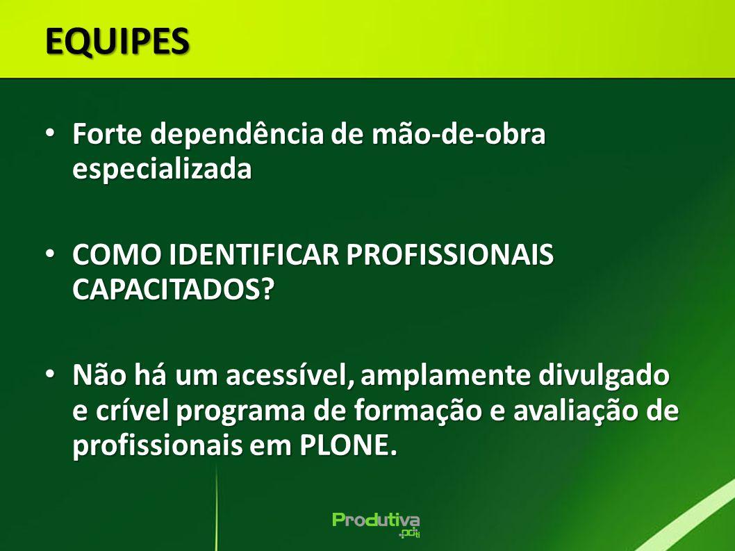 Forte dependência de mão-de-obra especializada Forte dependência de mão-de-obra especializada COMO IDENTIFICAR PROFISSIONAIS CAPACITADOS.