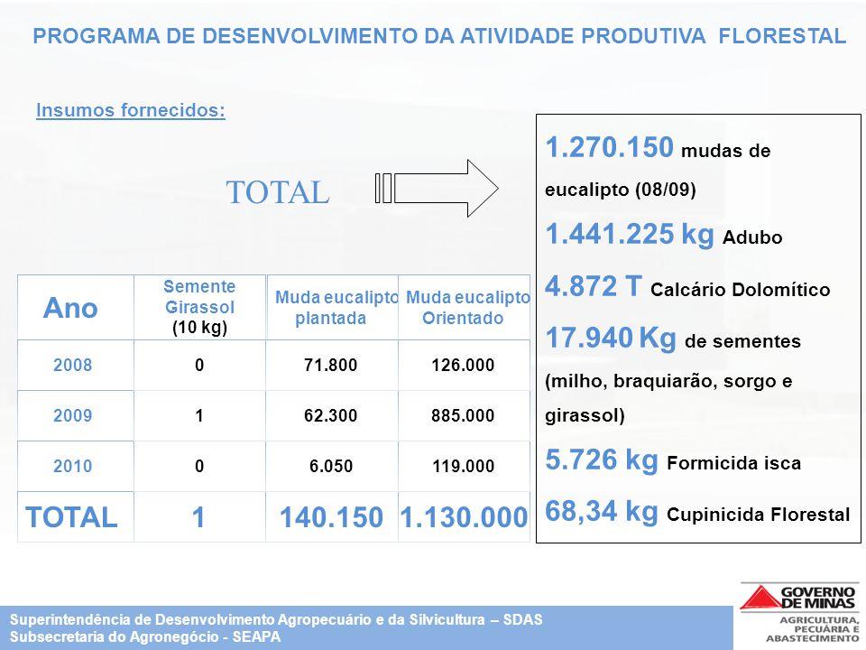 PROGRAMA DE DESENVOLVIMENTO DA ATIVIDADE PRODUTIVA FLORESTAL Insumos fornecidos: 1.270.150 mudas de eucalipto (08/09) 1.441.225 kg Adubo 4.872 T Calcá