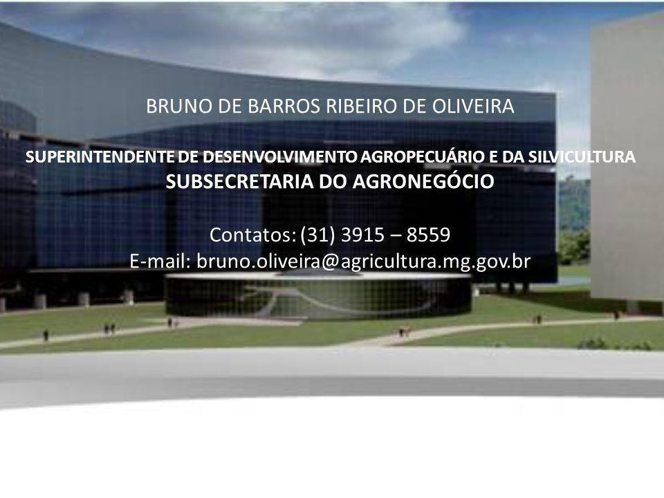 BRUNO DE BARROS RIBEIRO DE OLIVEIRA SUPERINTENDENTE DE DESENVOLVIMENTO AGROPECUÁRIO E DA SILVICULTURA SUBSECRETARIA DO AGRONEGÓCIO Contatos: (31) 3915