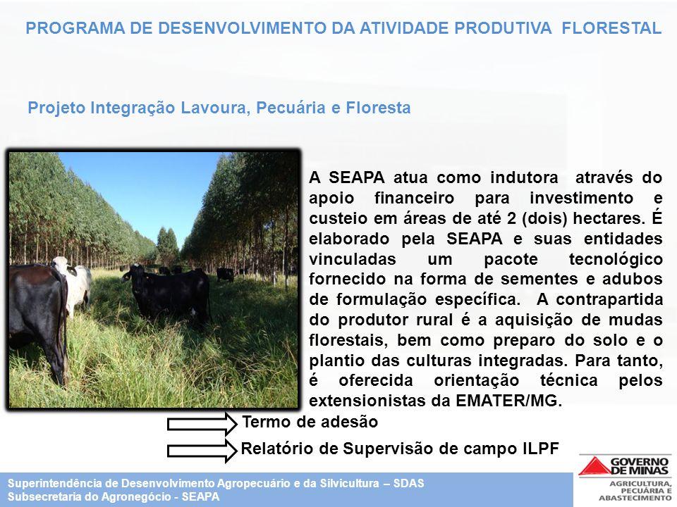 PROGRAMA DE DESENVOLVIMENTO DA ATIVIDADE PRODUTIVA FLORESTAL Projeto Integração Lavoura, Pecuária e Floresta A SEAPA atua como indutora através do apo