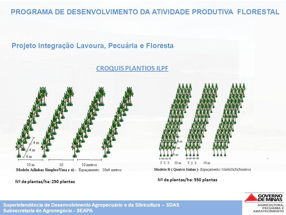 PROGRAMA DE DESENVOLVIMENTO DA ATIVIDADE PRODUTIVA FLORESTAL Projeto Integração Lavoura, Pecuária e Floresta CROQUIS PLANTIOS ILPF Nº de plantas/ha: 2