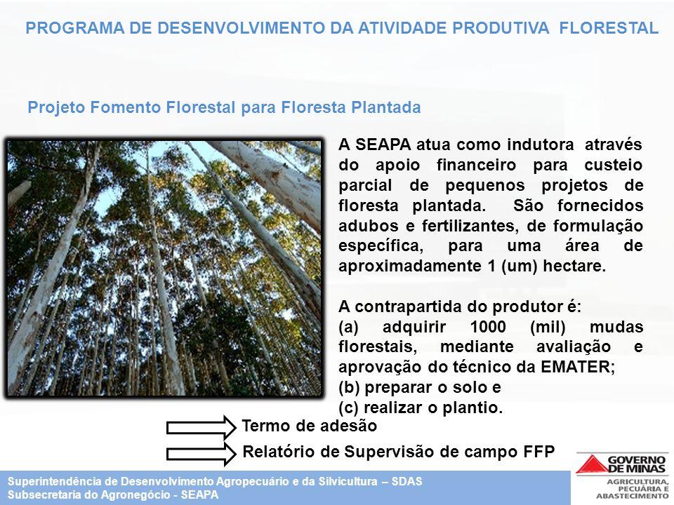 PROGRAMA DE DESENVOLVIMENTO DA ATIVIDADE PRODUTIVA FLORESTAL Projeto Fomento Florestal para Floresta Plantada A SEAPA atua como indutora através do ap