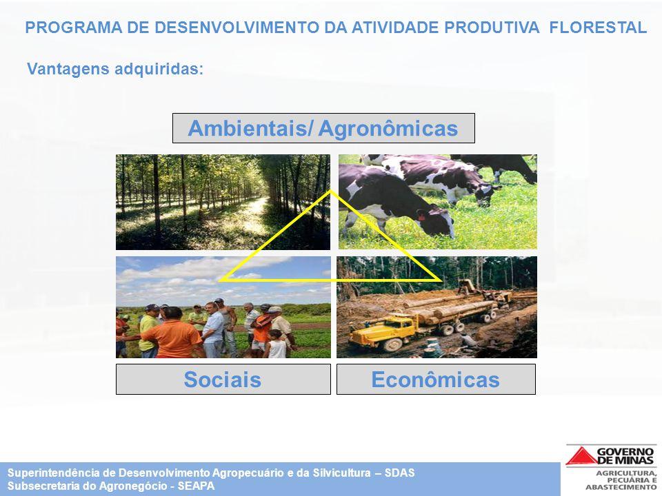 PROGRAMA DE DESENVOLVIMENTO DA ATIVIDADE PRODUTIVA FLORESTAL Vantagens adquiridas: SociaisEconômicas Ambientais/ Agronômicas Superintendência de Desen