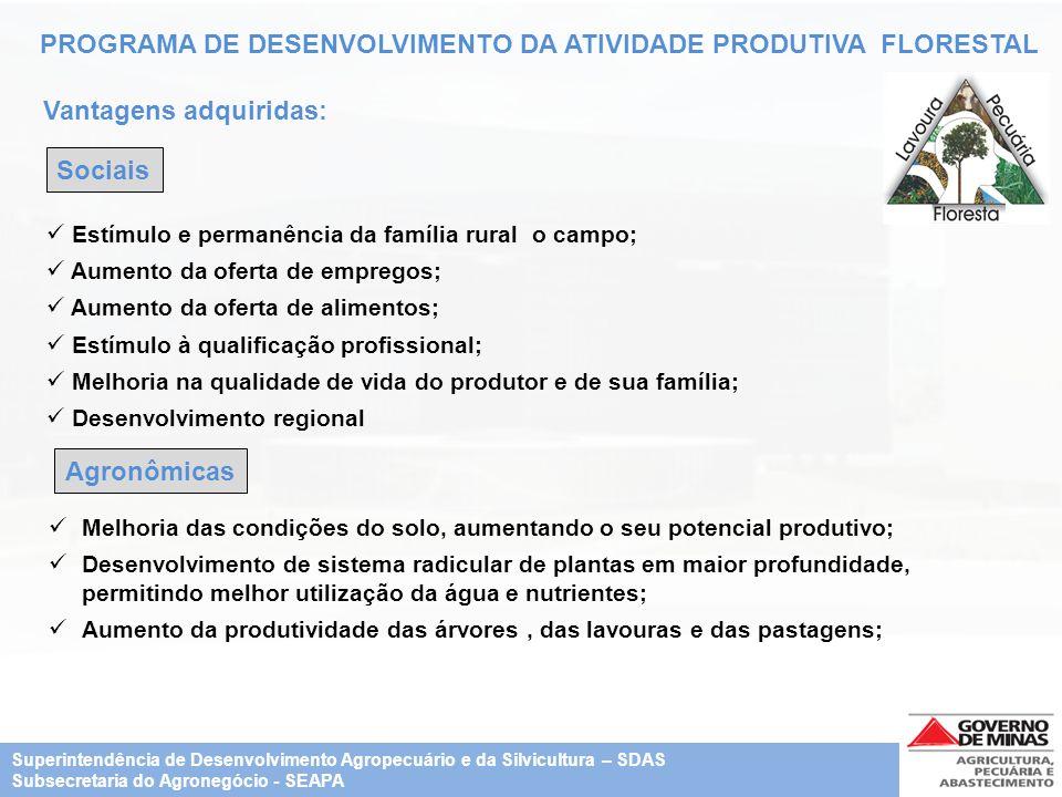PROGRAMA DE DESENVOLVIMENTO DA ATIVIDADE PRODUTIVA FLORESTAL Vantagens adquiridas: Sociais Estímulo e permanência da família rural o campo; Aumento da