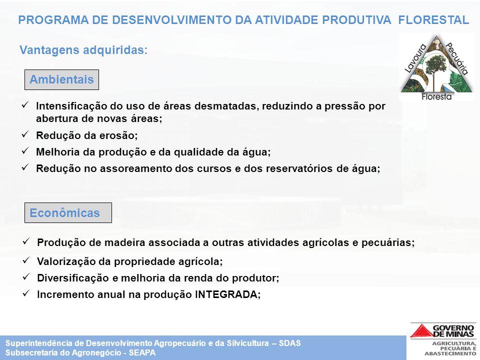 PROGRAMA DE DESENVOLVIMENTO DA ATIVIDADE PRODUTIVA FLORESTAL Vantagens adquiridas: Econômicas Ambientais Intensificação do uso de áreas desmatadas, re