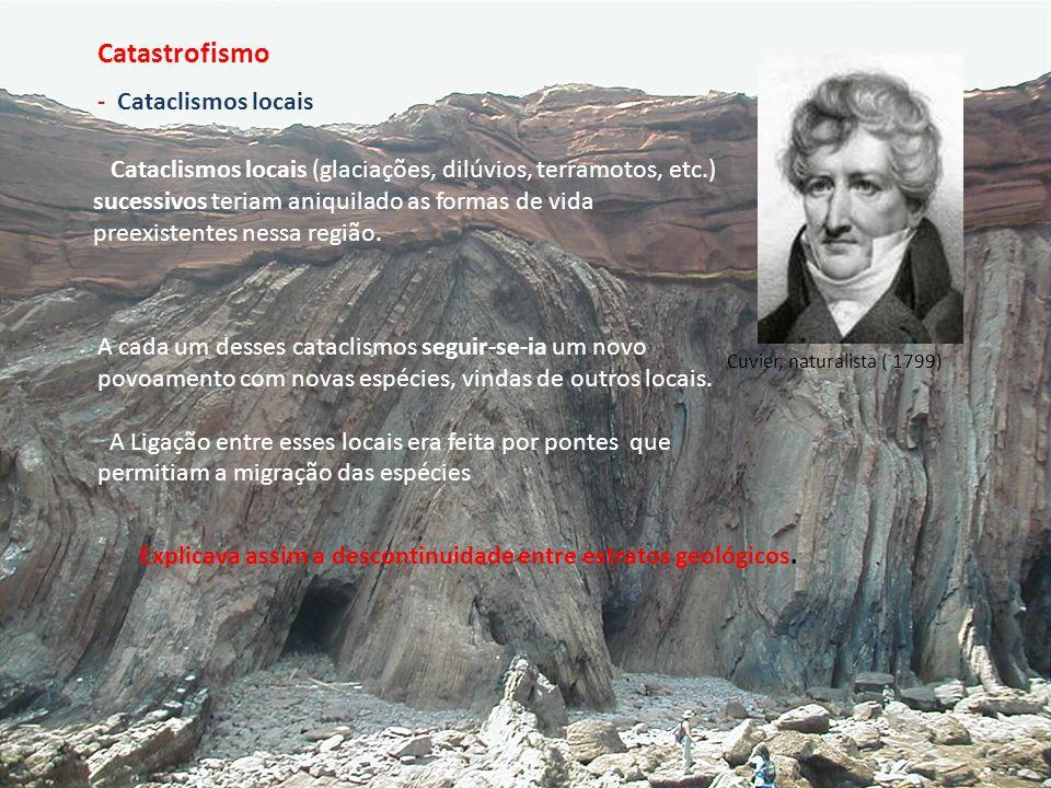 - Cataclismos locais Cuvier, naturalista ( 1799) Cataclismos locais (glaciações, dilúvios, terramotos, etc.) sucessivos teriam aniquilado as formas de
