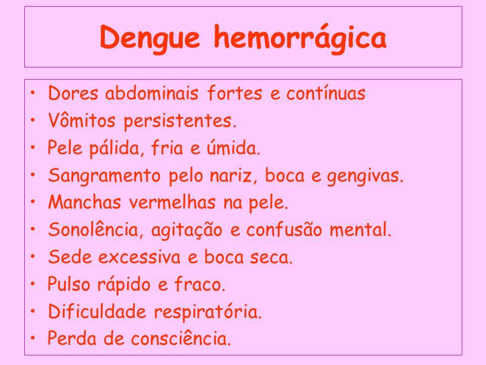Dengue hemorrágica Dores abdominais fortes e contínuas Vômitos persistentes.