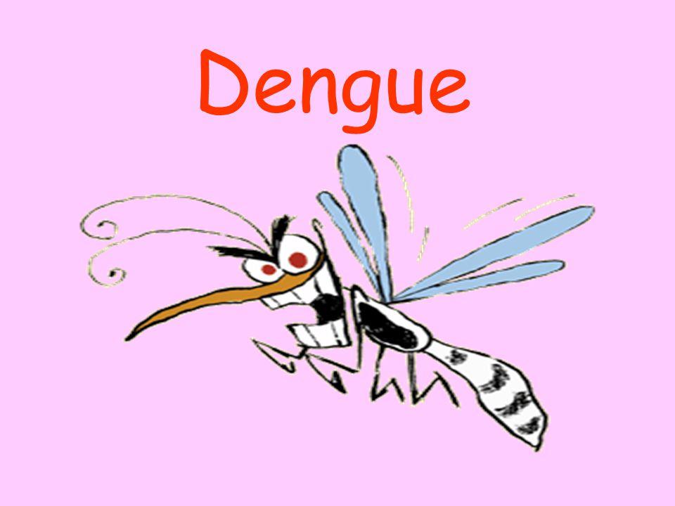 O primeiro vírus isolado de dengue no Brasil foi em 1981, em Boa Vista, Roraima, onde foram isolados os sorotipos DEN1 e DEN4.
