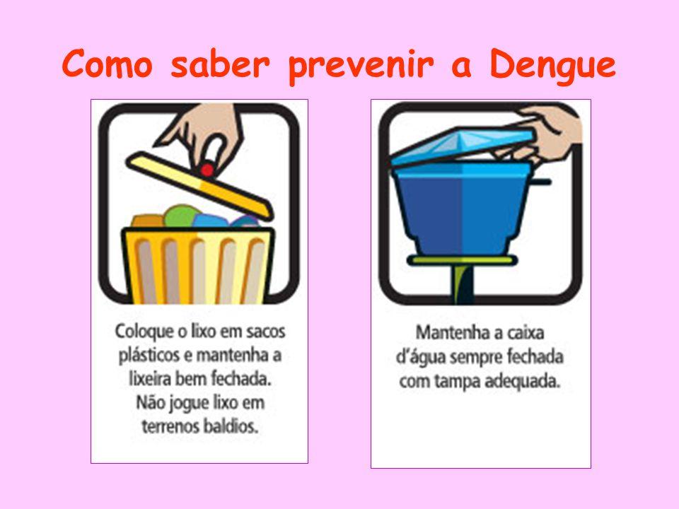 Como saber prevenir a Dengue
