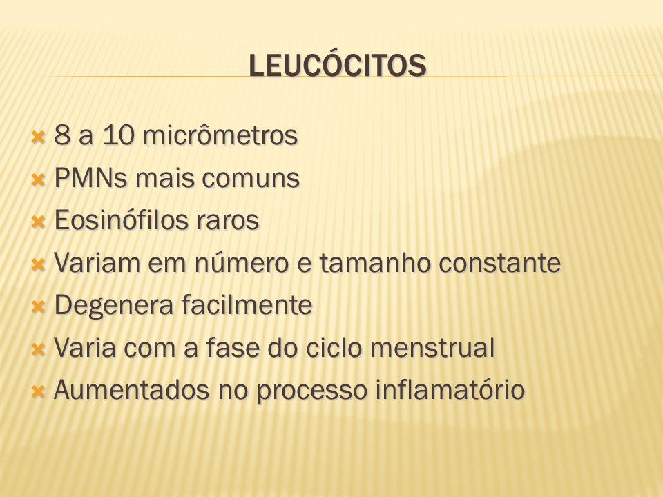 LEUCÓCITOS