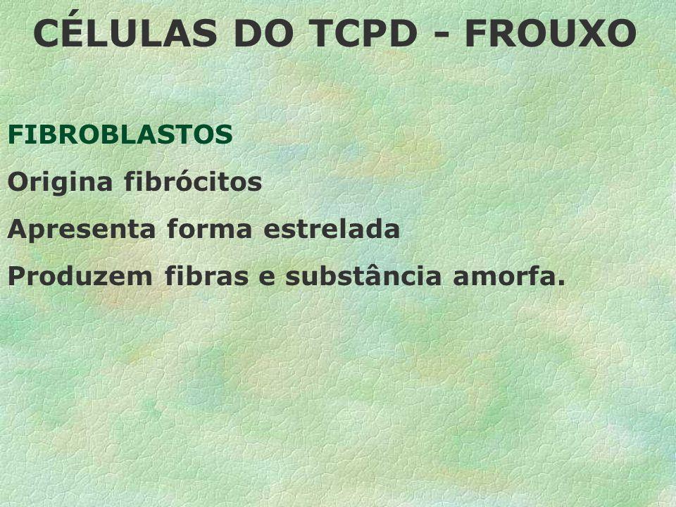1-TECIDO CONJUNTIVO PROPRIAMENTE DITO T.C. FROUXO= é o mais amplamente distribuído no corpo humano, exercendo as funções principais de preenchimento d