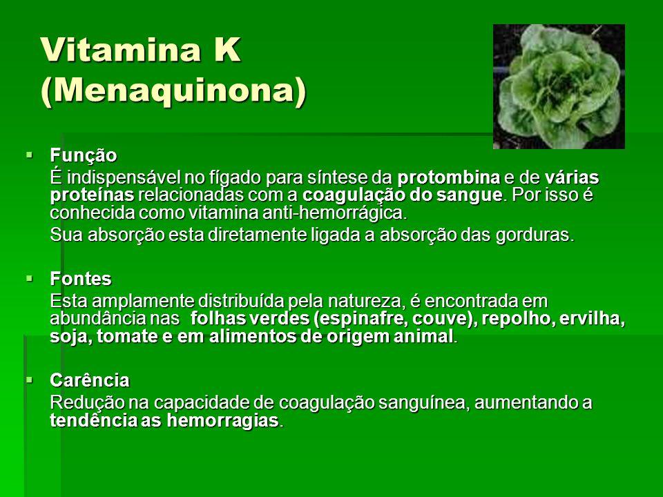 Hidrossolúveis Hidrossolúveis são: B1(Tiamina), B2 (Riboflavina), B6 (Piridoxina), B12 (Cianocobalamina) e Vitamina C (Ácido Ascórbico) as principais, sendo importantes também Niacina, Ácido Fólico, Biotina, Ácido Pantotênico, Colina.